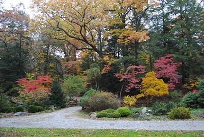 Fall photo by Lorraine Meyer
