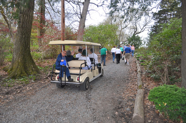 Cart for tours