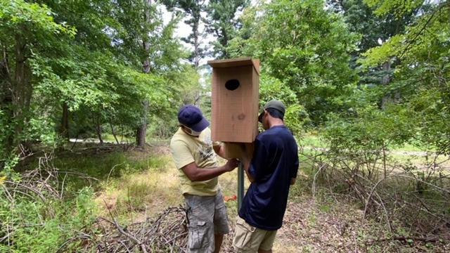 Photo of Duck Box being installed