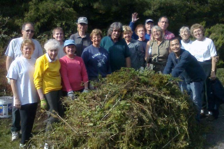 Volunteers with Weeds