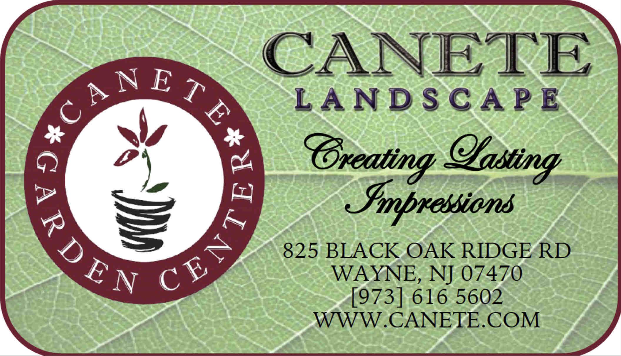 Canete Landscape
