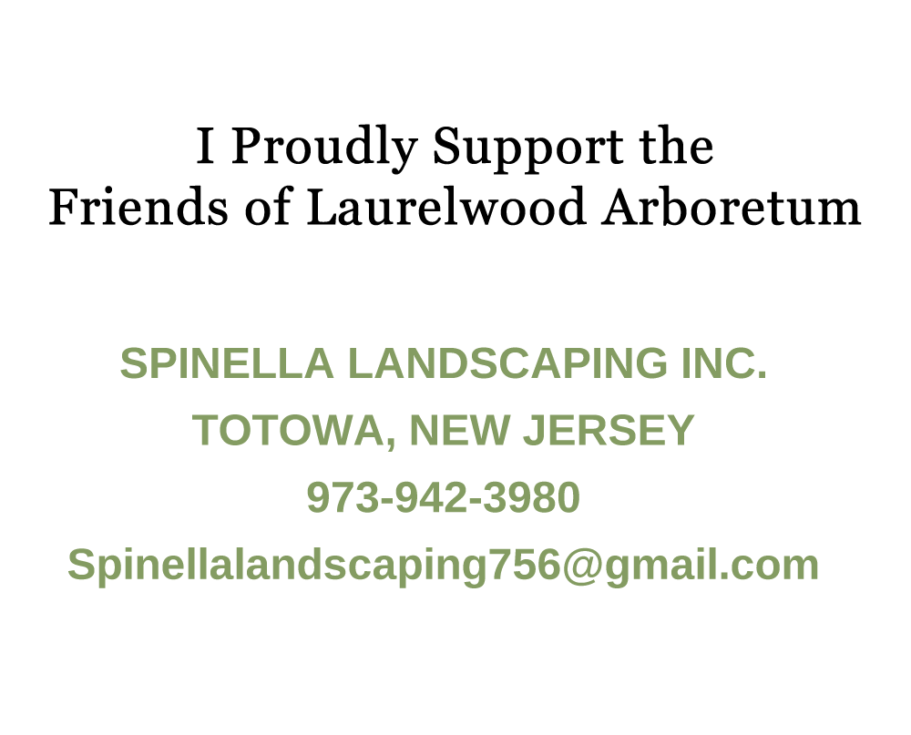 Spinella Landscaping